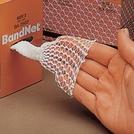 BandNet™